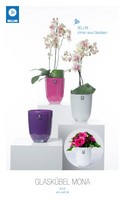 CACHE POT ORCHIDEE